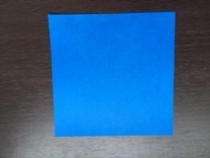 サメ折り紙写真 (1)