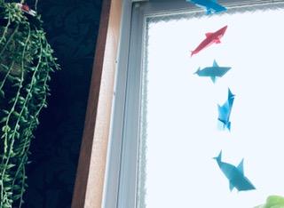 サメ折り紙写真 (62)